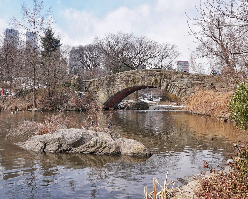Central Park Gapstow Bridge
